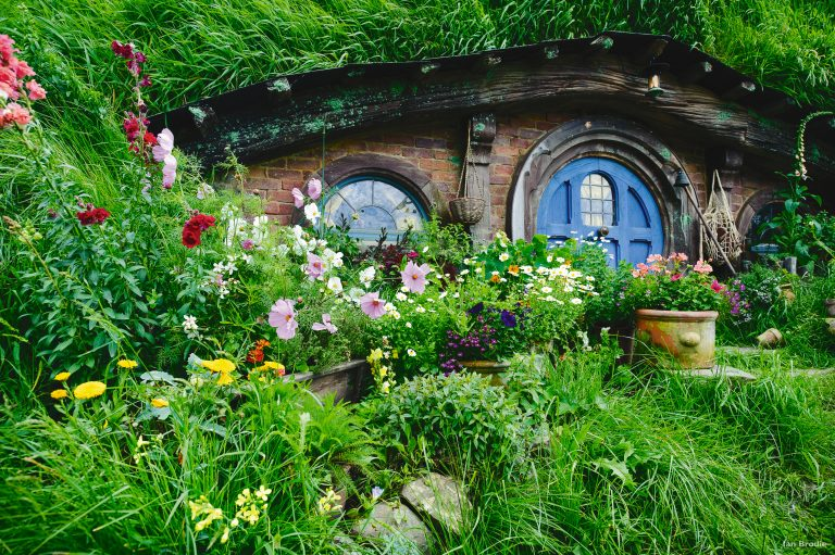 Hobbiton Transfers From Auckland, Hobbiton Day Tours From Auckland
